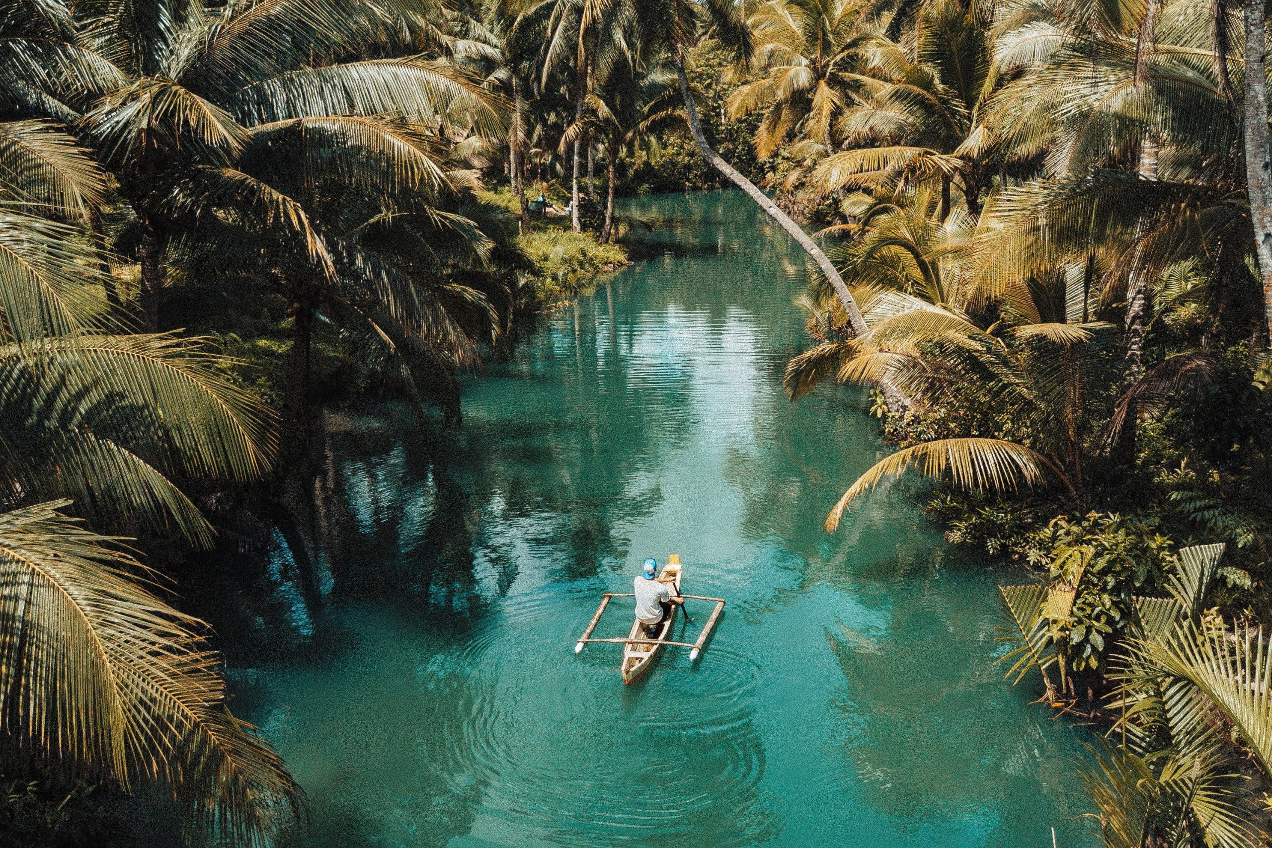 Man paddling boat through the jungle